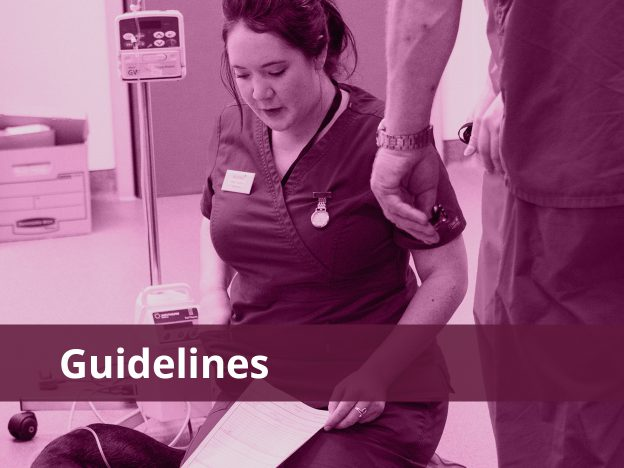 Guidelines course image