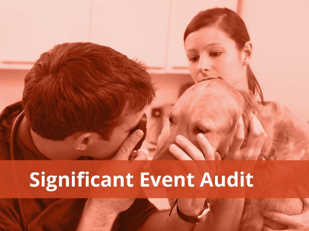 Significant Event Audit course image