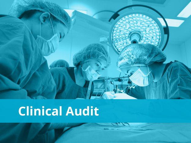 Clinical Audit course image